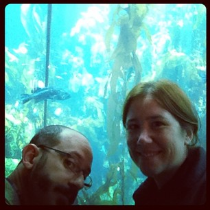 Kelp forest! It's crowded here today...