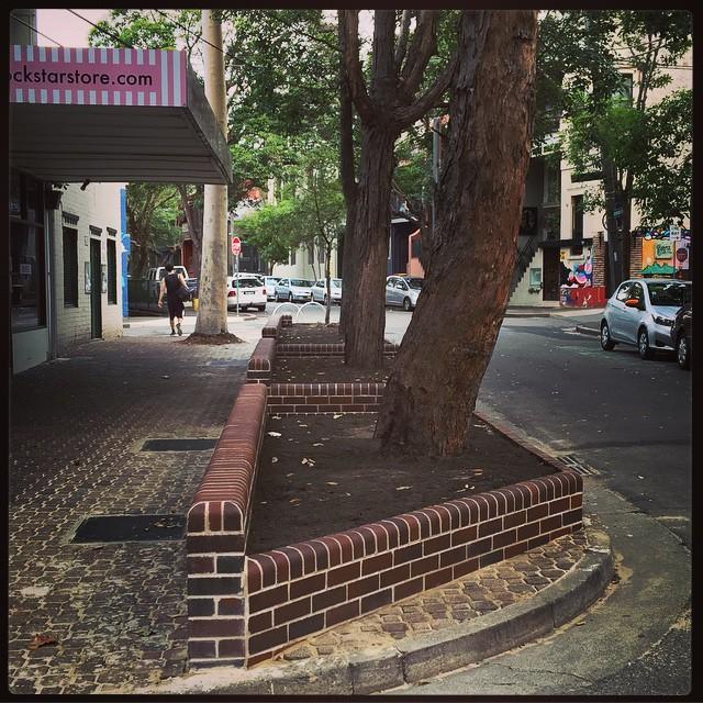 Lovely new raised brick garden beds on Shepherd St. in Chippo. Thanks @cityofsydney!