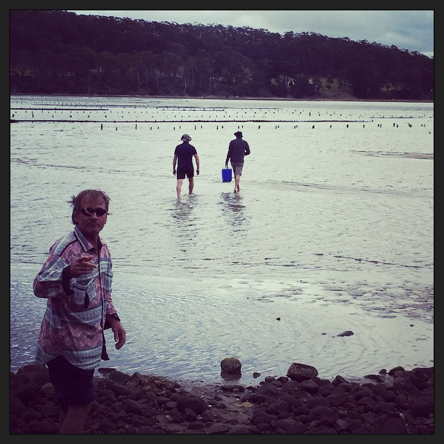 Oyster farm. Some to eat now; some to take back to camp. #brunyisland