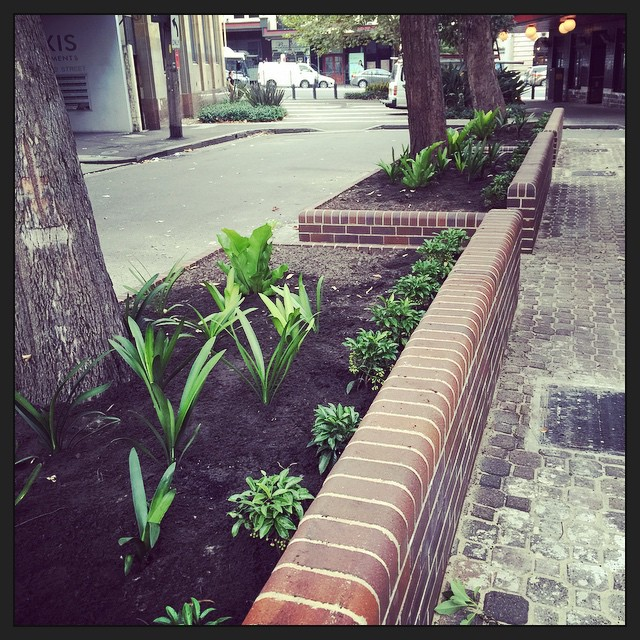 Took my photo a day too early. Now there are plants! Thanks @cityofsydney...