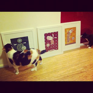 There are a lot of swanky art galleries in Chippo, but this is the only one FOR CATS. (cc @artbuds)