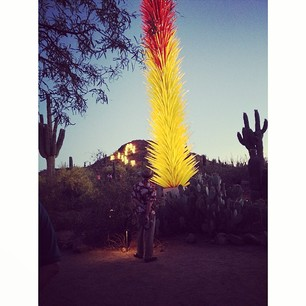 Amazing Chihuly glass artwork in the desert.