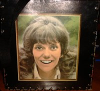 Carpenters Album Cover Bag