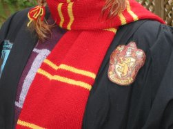 Close-up of Gryffindor badge