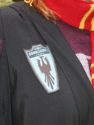 Close-up of Dumbledore's Army badge