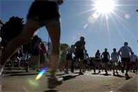 City 2 Surf Runners