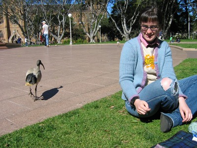 Miss Helen being menaced by an ibis