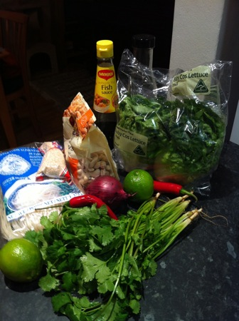 Noodles and garnish ingredients