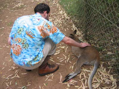 Snookums and a wallaby