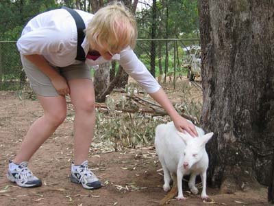 Me and the albino wallaby