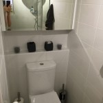 Toilet and medicine cabinet